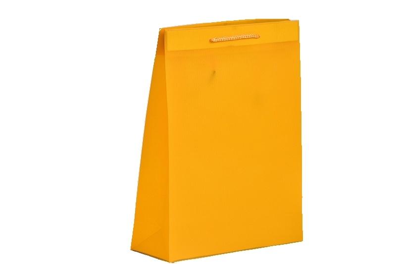 Dárková taška plastová 40x31x9