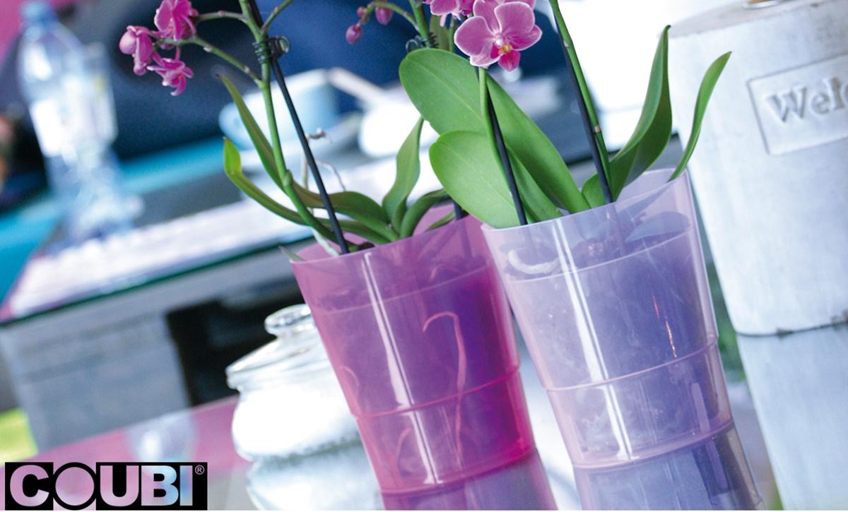 Květináč na orchideje Coubi Orchid průhledný