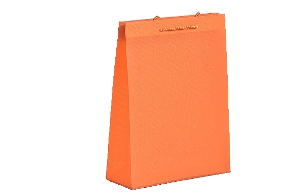 Dárková taška plastová 34x27x9cm