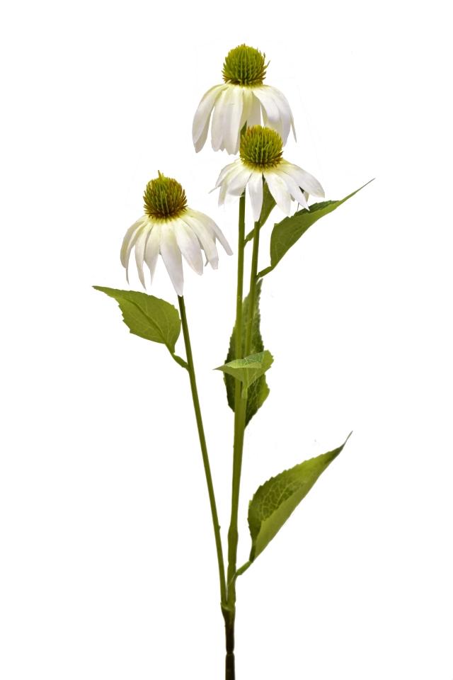 Umělá rostlina Echinacea 76 cm, bílá