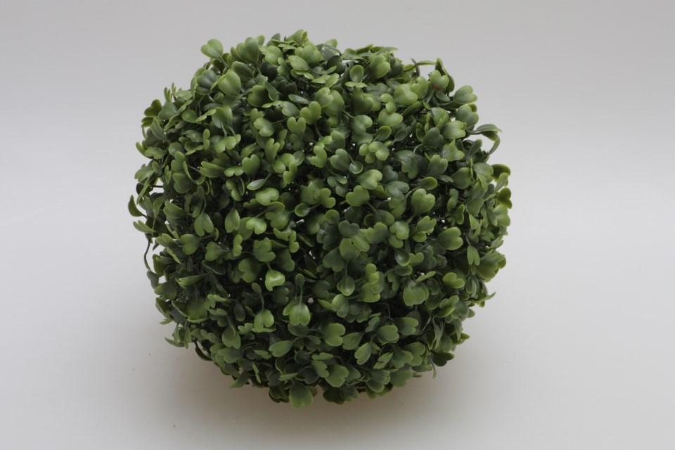 Buxusová koule 17 cm
