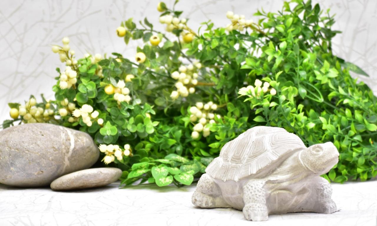 Betonová želva Leonardo M