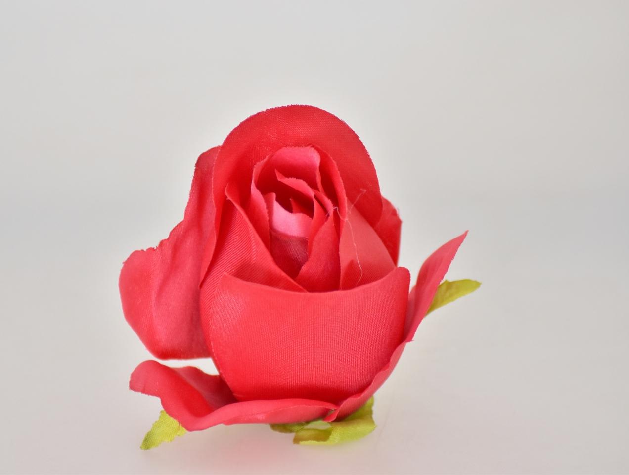 Květ růže červené