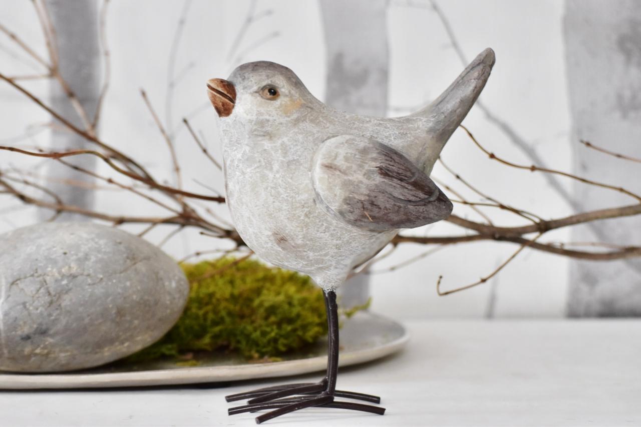 Ptáček Ross M
