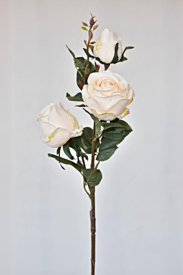 Růže bílá 78 cm