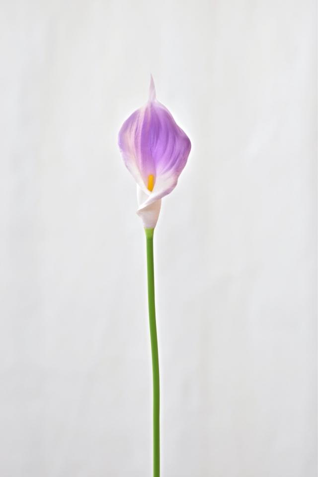 Umělá kala fialová, 41 cm