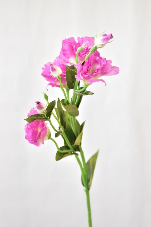 Umělá květina Eustoma 77 cm, růžovo-bílá