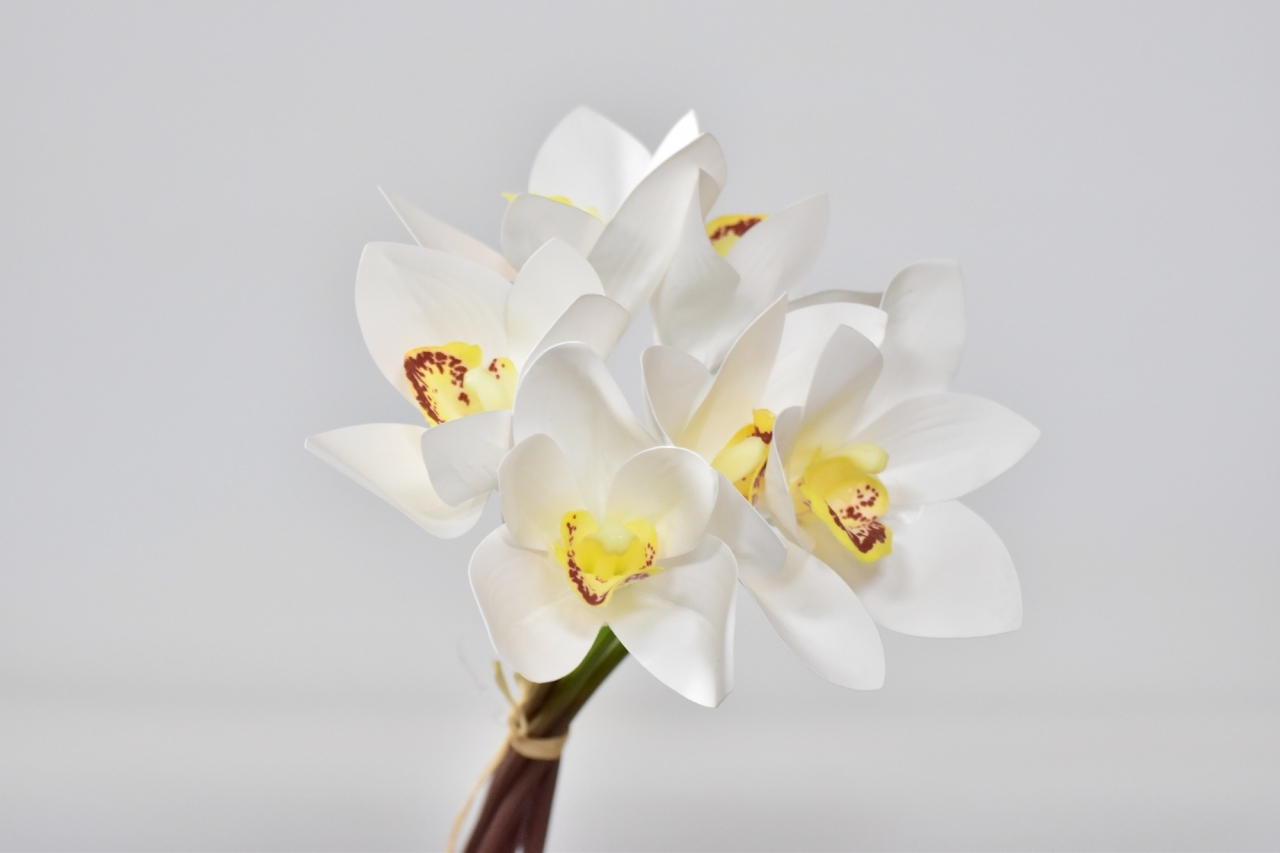Kytička orchidejí Phalaenopsis 26 cm, bílo žlutá