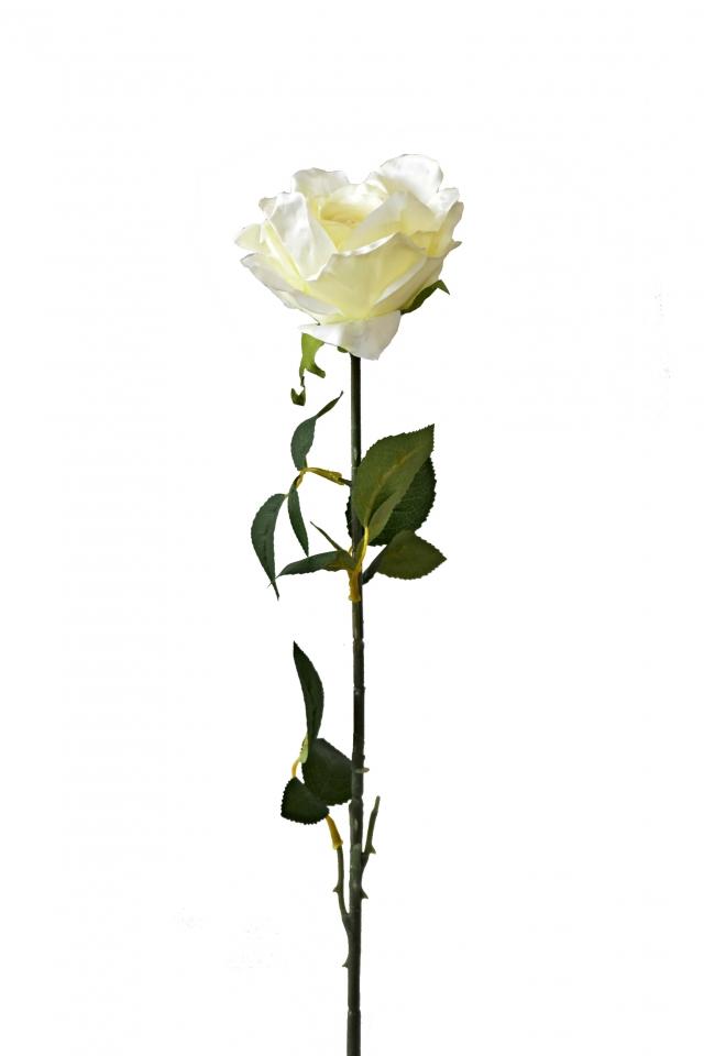 Růže světle zelená 92 cm