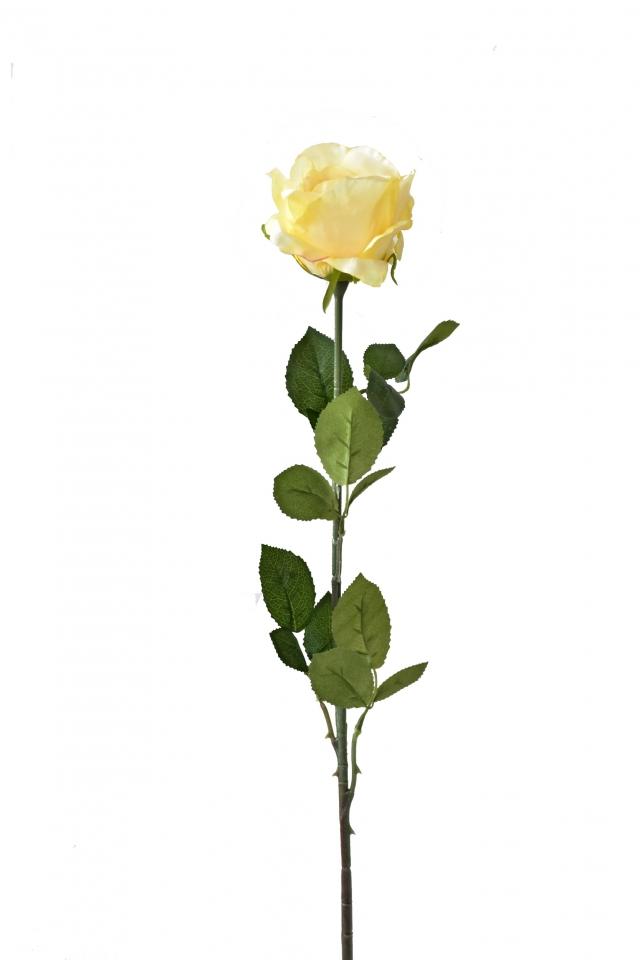 Růže žlutá 92 cm