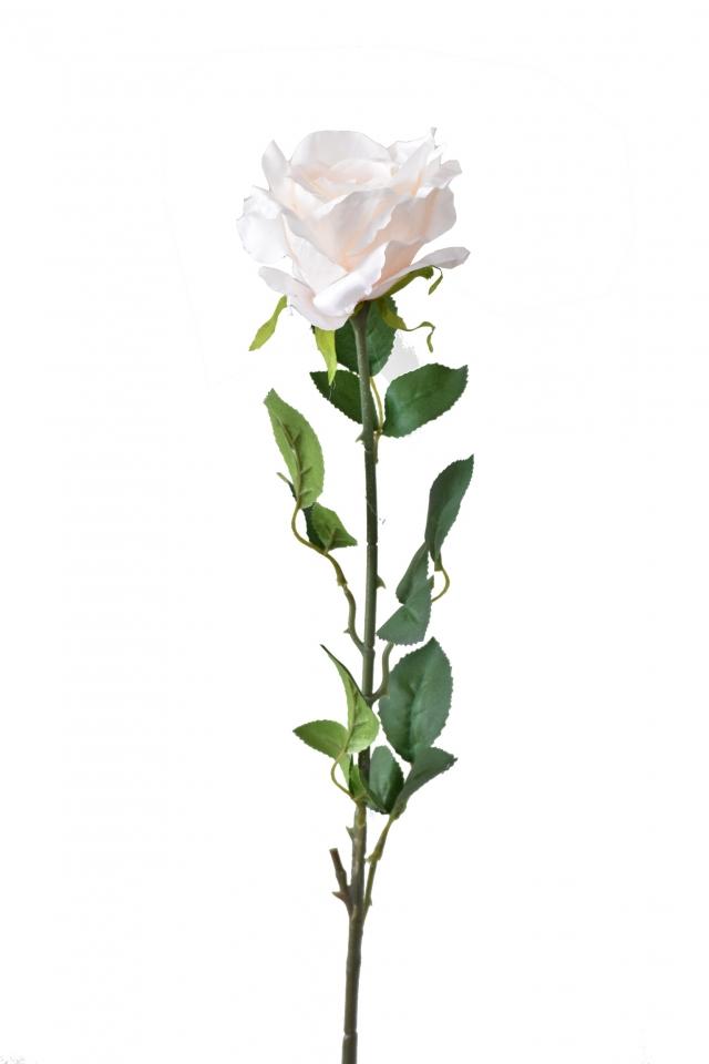 Růže krémová 92 cm