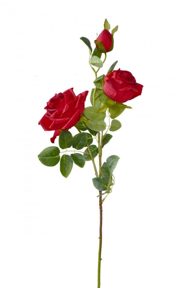 Růže červená 74 cm