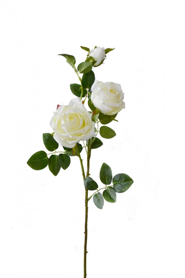 Růže krémovo-bílá 74 cm