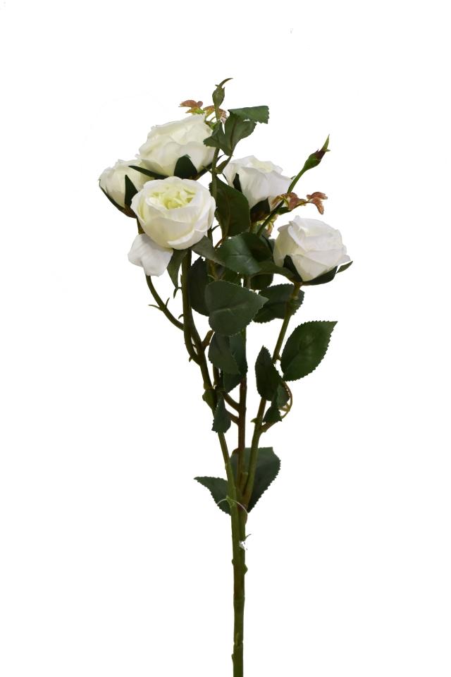 Růže 67 cm, bílá
