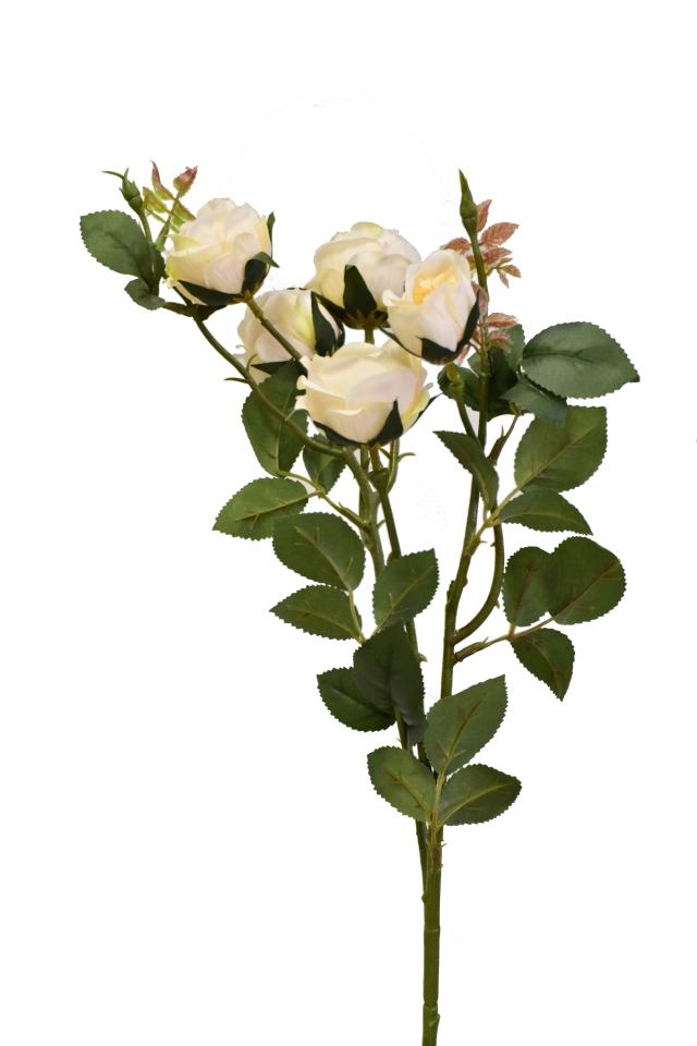 Růže 67 cm, krémová