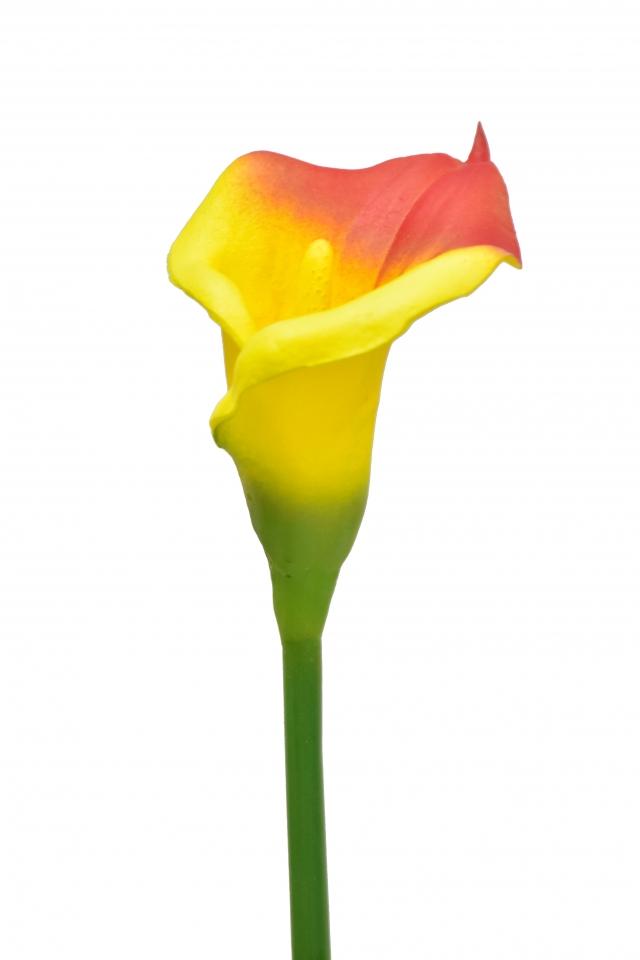 Umělá kala červeno-žlutá, 63 cm
