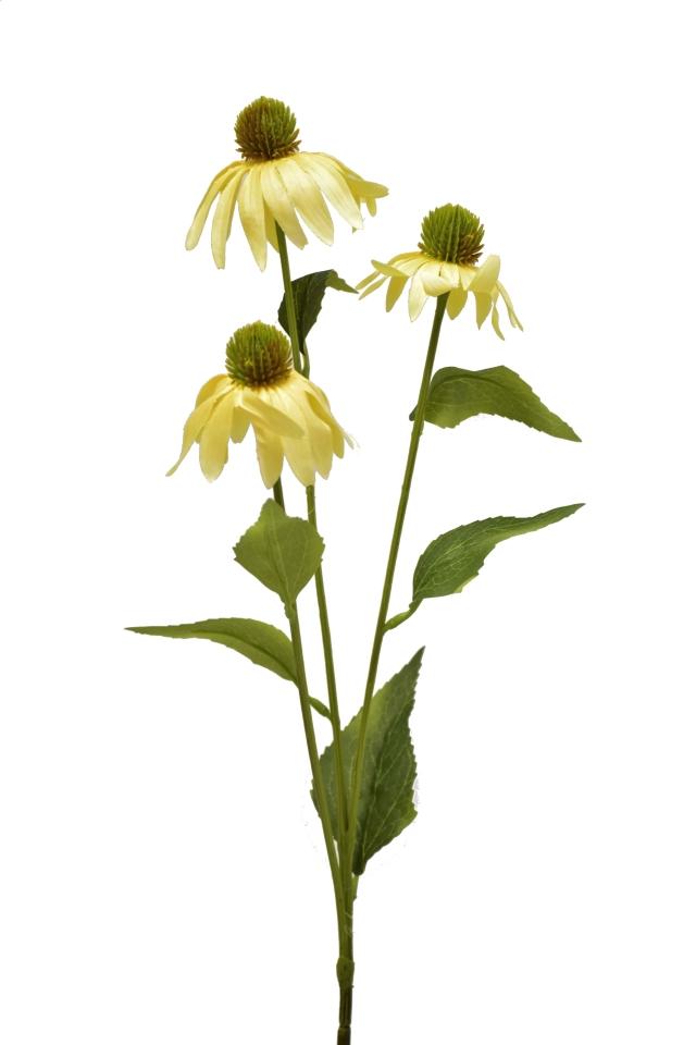 Umělá rostlina Echinacea 76 cm, krémová