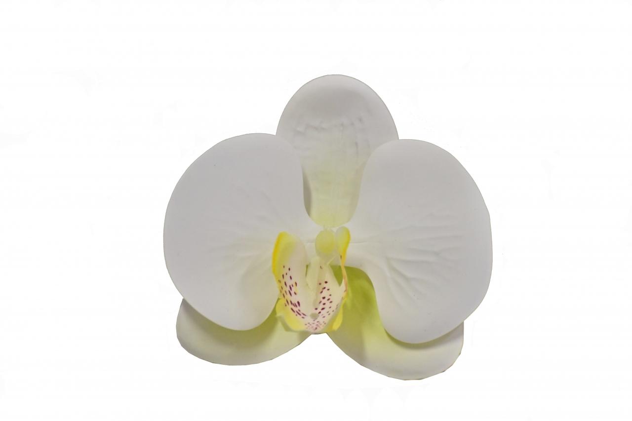 Vazbový Phalaenopsis 9x9x3,5 cm, bílo-žlutý