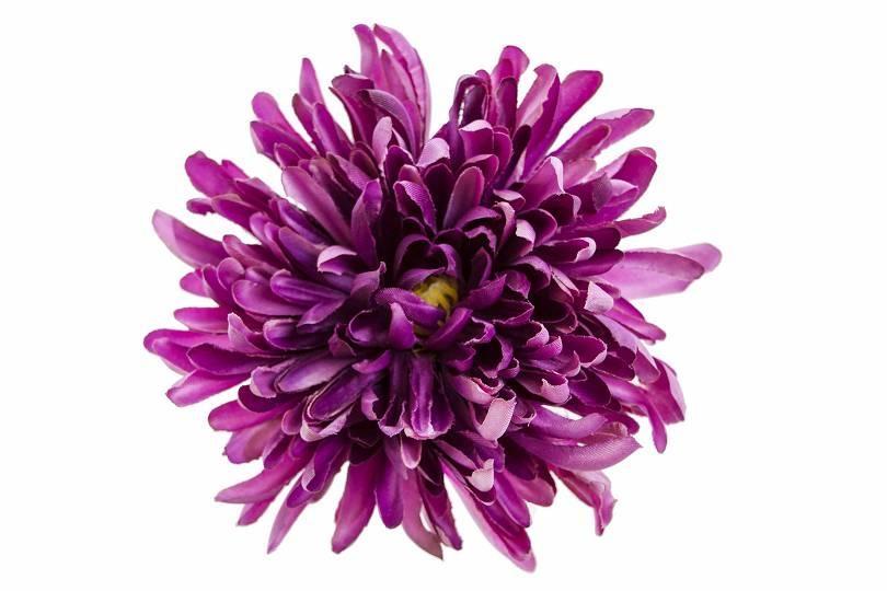 Vazbová chryzantéma 13 cm, fialová